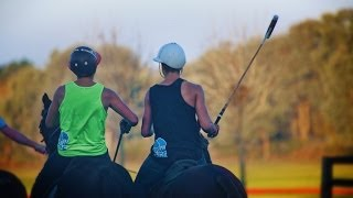 Polo in Argentina (Ch 19)