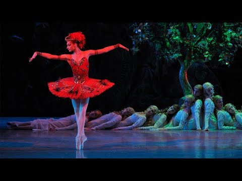 Rite of Spring • Firebird | Stravinsky & The Ballets Russes | Mariinsky 2008 (DVD/Blu-ray trailer)