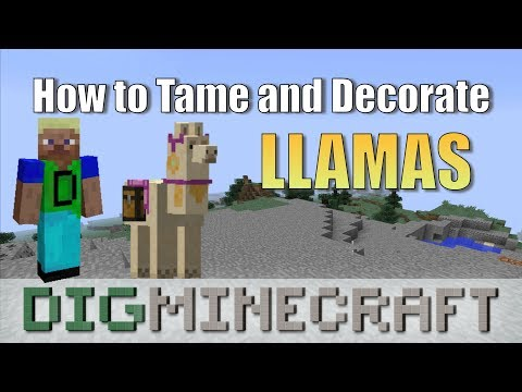How To Put A Chest On A Llama In Minecraft