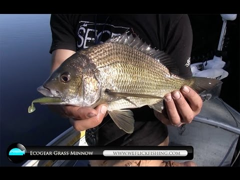 how to use soft plastics for bream