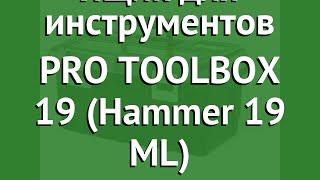 Ящик для инструментов PRO TOOLBOX 19 (Hammer 19 ML) (Keter) обзор 17331482