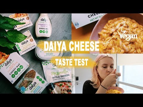 VEGAN CHEESE TASTE TEST & REVIEW | TRYING THE NEW DAIYA CHEESE