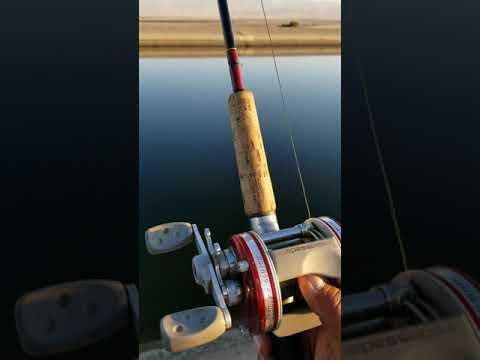 How I Fish The California Aqueduct