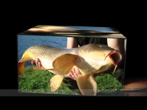 Carpfishing Portugal Travel Video