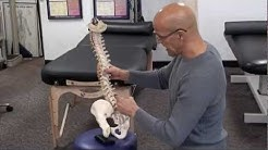 hqdefault - Can Sitting On Your Wallet Cause Sciatica
