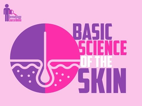 Basic Science of the Skin Lecture