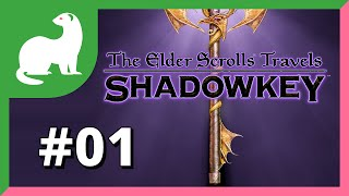 Let's Play The Elder Scrolls Travels: Shadowkey Part 1 — I'm a human tank!