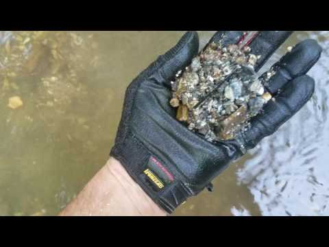 Creek walking in Missouri - Metal detecting day, Garrett Ace 350, Railroad stuff, Musk rat (2 of 3)