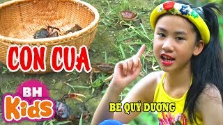 CON CUA ♫ Con Cua 8 Cẳng 2 Càng ♫ Bé Quý Dương | Nhạc Thiếu Nhi Vui Nhộn