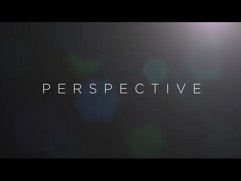 PERSPECTIVE 1