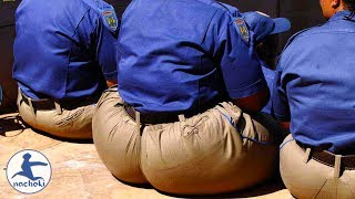 Baixar Top 10 Most Obese Countries in Africa