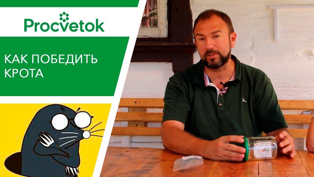 Крот в Огороде. Гуманные Средства Борьбы | таблетки для похудения купить в беларуси