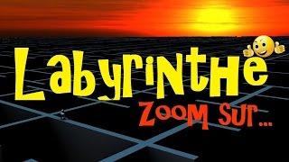 Mais à Quoi Servent les Labyrinthes ?