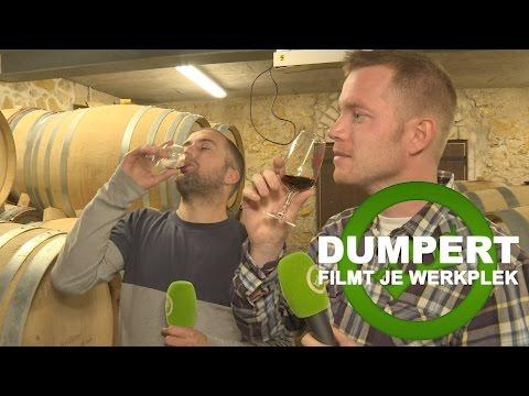 Dumpert Filmt Je Werkplek S02E04: WIJNGAARD!