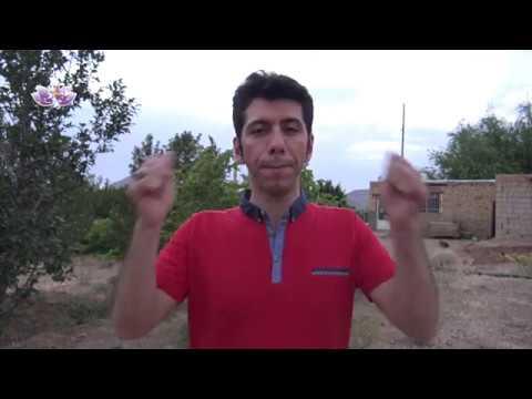 Female MASTURBATION Basic TECHNIQUES [...How To MAKE HER Very WET] ✅Kaynak: YouTube · Süre: 9 dakika42 saniye