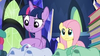 Fluttershy & Twilight - Snacks, books, blankets, books. You said books twice. A lot of books.