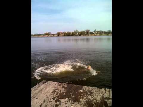Пары купаются на речке фото 775-535