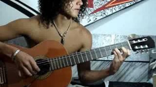 Flor venenosa - Heroes del Silencio (guitar)