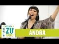 Download Andra - Floare De Nu-Ma-Uita (Versiune acustica) (Live la Radio ZU)