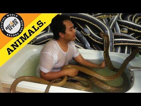 Cobra Bath Edit
