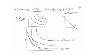 Cobb-Douglas Consumer Optimization Part 1