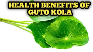 GOTU KOLA FOR INSOMNIA AND JOINT PAIN.