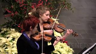 Sonata VIII per due violini e basso continuo, Giovanni Batista Fontana