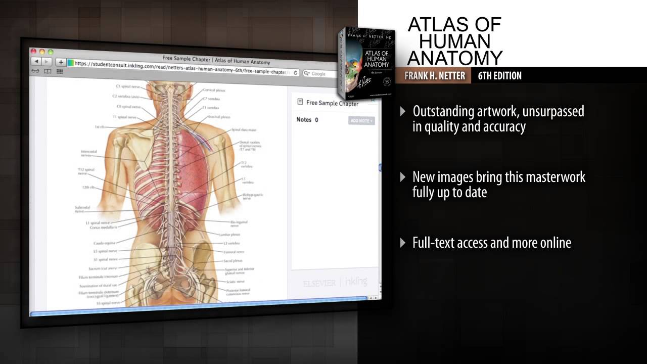 Atlas of Human Anatomy, 6th Edition - YouTube
