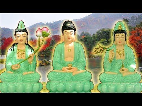 Sự Tích Đức Phật A Di Đà và Các Vị Bồ Tát (Hay Lắm) - Phật Duyên
