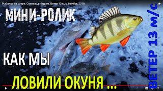 Рыбалка на озере. Салехард-Надым. Ветер 13 м/с. Ноябрь 2018