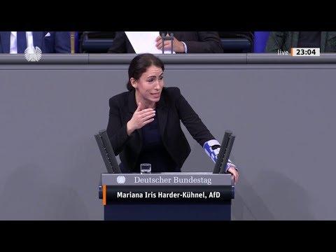 """Bundestag. """"Es muss Schluss sein mit der Multikulti Ideologie."""" Mariana Harder-Kühnel AfD 14.11.2019"""