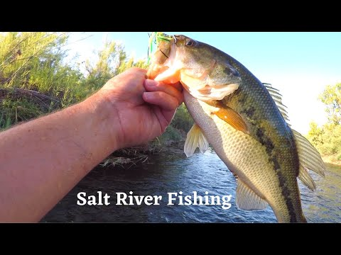 Fishing On The SALT RIVER AZ