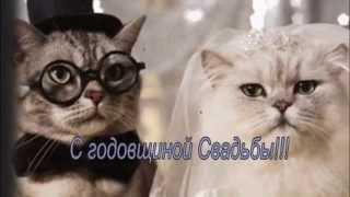 Видео Открытка с Годовщиной Свадьбы