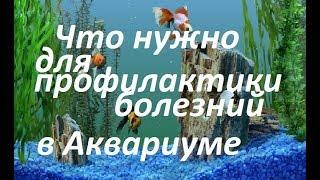 видео Профилактика заболеваний аквариумных рыбок