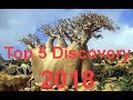 Top 5 Discovery 2018