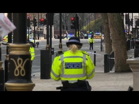 Police shoot man in UK parliament 'terror' attack