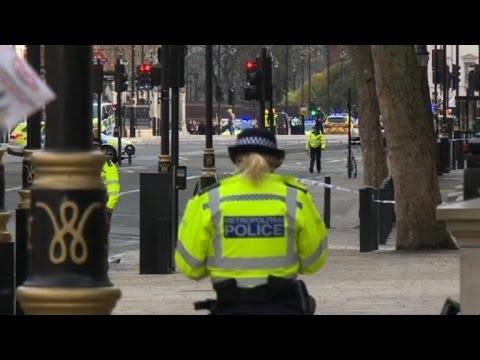 Police shoot man in UK parliament 'terror' attack