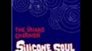 Silicone soul - the snake charmer