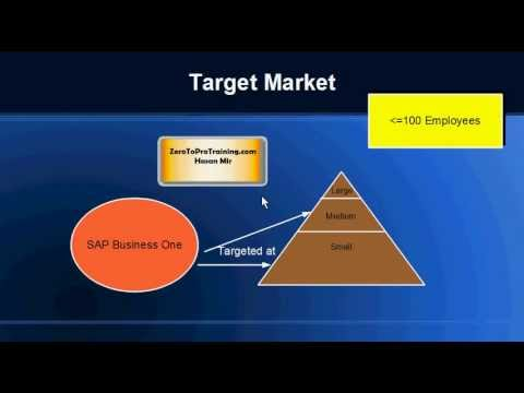 What is SAP Business One? - An Overview and Introduction