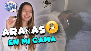SPIDERS IN MY BED🕷️😱BUGS IN MY ROOM * REACTION from AFRICA * Mellizas Channel