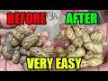 How to clean peanuts after harvest