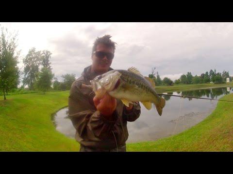 Carolina fishing fly fishing for largemouth bass on top for Fly fishing for largemouth bass