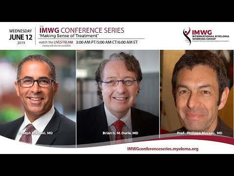 IMWG Conference Series: Amsterdam, Netherlands