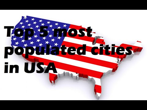 Top 5 Biggest Cities in the USA