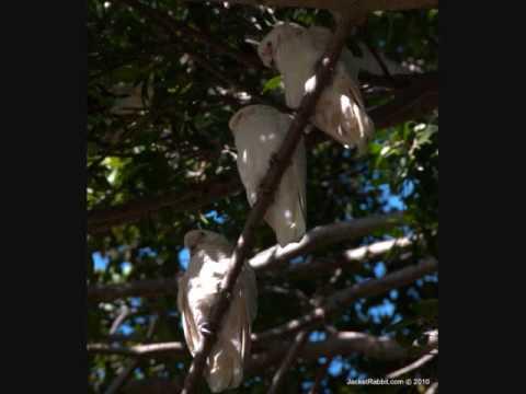Discover Australia - Botany Bay