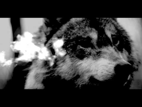 Silver Snakes - Red Wolf [Official Video]