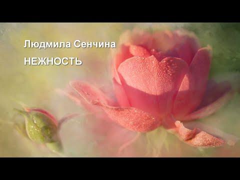 Нежность  Людмила Сенчина