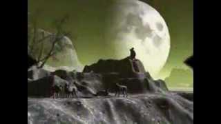 Одинокий волк .Виталий Цаплин.(автор и исполнитель)