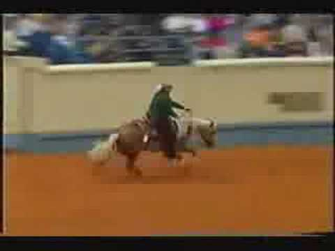 Wimpys Little Step - 2002 NRHA Futurity Open Champion