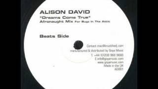 alison david -- dreams come true (afronaught beats)